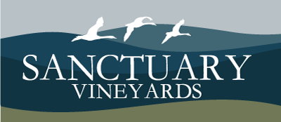 Sanctuary Vineyards Currituck